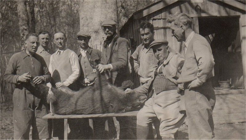 VALLOIS Georges Chasse 1951